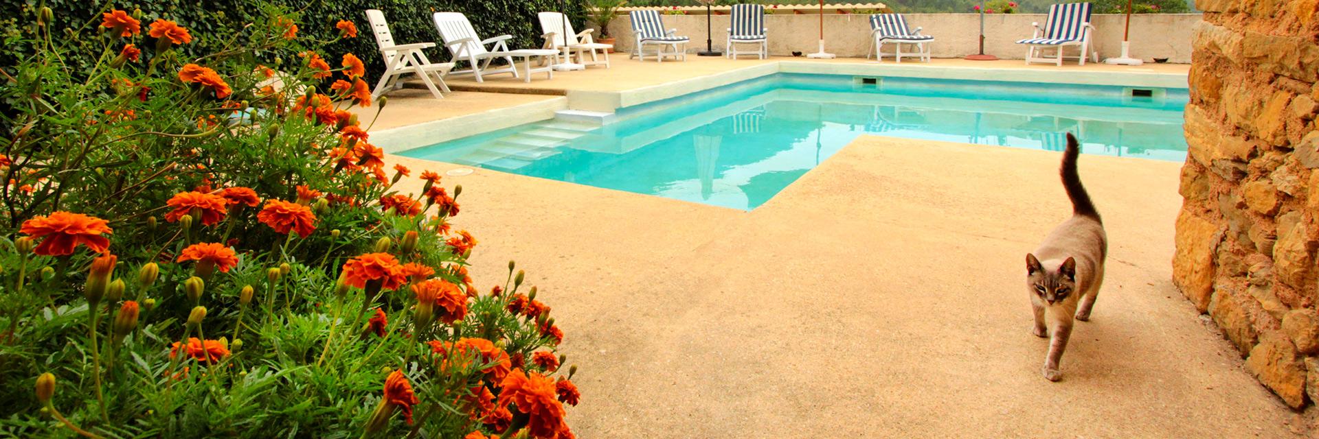 Notre espace bien-être : piscine et jacuzzi